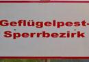 Stadt Kassel ordnet allgemeine Stallpflicht an