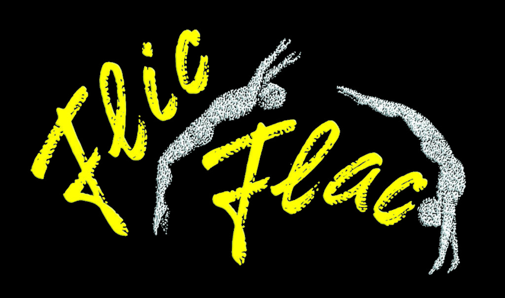 flicflac-logo-colour