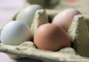 Knapp 12 Milliarden Eier in Deutschland im Jahr 2016 produziert