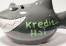 Kredit ohne Schufa: Angebote gründlich prüfen