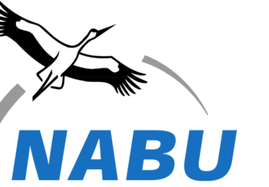 NABU: Vogelschutz im Stromnetz muss besser werden