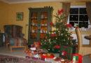 Tipps für Tierhalter:  Stress- und risikofrei durch die Weihnachtszeit