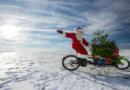 Mit dem Fahrrad einen Weihnachtsbaum transportieren? Wie soll denn das gehen?