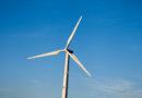 NABU: Offshore-Windparkbetreiber müssen Auswirkungen auf Vögel ernst nehmen