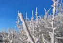Amtliche Warnung vor Glätte und Frost