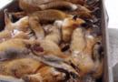 Fuchsjagd ist organisierte Tierquälerei