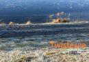 Twistesee – Tourismus soll wachsen