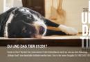 """""""Kollege Hund"""" steht im Fokus der neuen Ausgabe – DU UND DAS TIER 1/2017"""