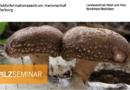 Shitaake, Austernpilze und Co. – Pilzzuchtkurs auf dem Hammerhof