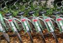 Radfahrausbildung in den Osterferien 2017; Kasseler Polizei bietet kostenlose Beschulung für Schulkinder an Insgesamt 20 Plätze; schnelle Anmeldung empfohlen