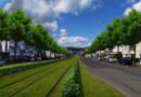 Erster Rasengleis-Abschnitt in der Wilhelmshöher Allee vollendet