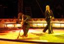 Verwaltungsgericht Lüneburg erklärt angeordnete Abgabe von Zirkus-Schimpanse Robby für rechtskräftig