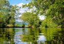 Gut für die Natur und  gegen Hochwasser