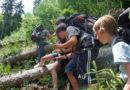 Als Waldscout in die Wildnis