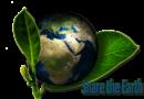 Mit Umweltschutz Geld verdienen?