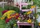 Herrliche Herbsttage erleben   – VERLOSUNG-