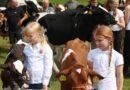 Landauer Kram- und Viehmarkt