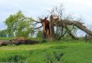 Donnerwetter! Wer zahlt nach dem Sturm für Schäden an Haus oder Auto?