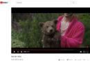 Bären sind keine Accessoires