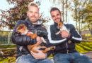 Handball-Bundesligist MT Melsungen hat ein Herz für Tiere