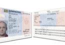 Immer mehr Einreisen mit Blue Card