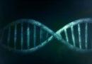 Hildesheim hat neuen DNA-Test zur Altersbestimmung
