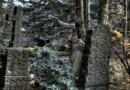 Pkw-Fahrer landet auf Friedhof in Baunatal