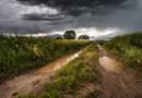 Waldeck-Frankenberg – Verkehrsunfälle nach Sturmschäden