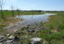 Anlage weiterer Ausgleichsflächen im Gewerbegebiet Langes Feld