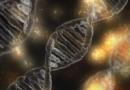 20 Jahre DNA-Analyse-Datei Mehr als 200.000 Treffer führten zu konkreten Täterhinweisen