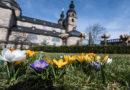 Kirchen rufen an Ostern zu bewusstem Umgang mit dem Tod auf