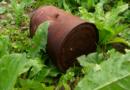 Illegale Ablagerung von Gartenabfällen