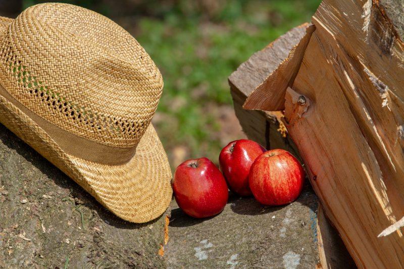 Bio-Apfelsaft gibt's jetzt mit Artenschutz-Plus