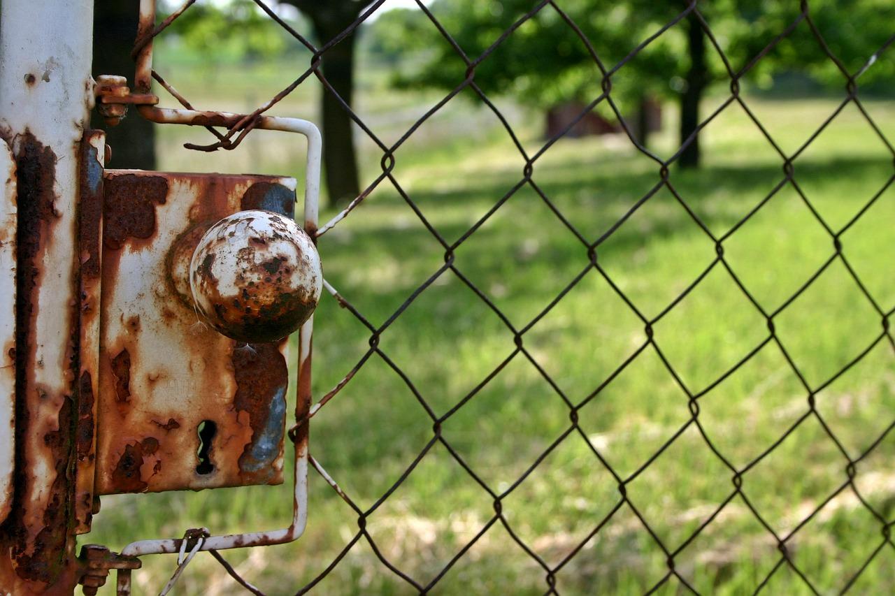 Darmstadt will belastete Kleingärten sanieren