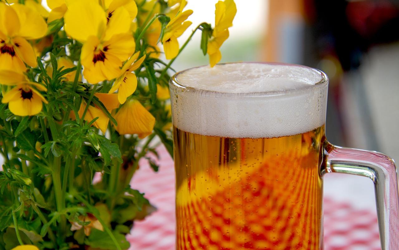 Steigender Bierabsatz im Vorfeld der Fußball-WM