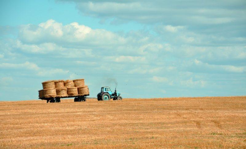 Landwirte brauchen Unterstützung