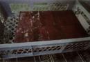 Behörde vertuschte schwere Hygienemängel in Tönnies-Wurstfabrik