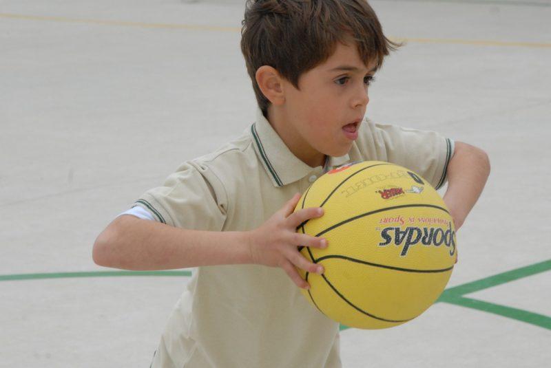 Sportdezernat unterstützt die Initiative 'Basketball macht Schule' des Vereins Fraport Skyliners