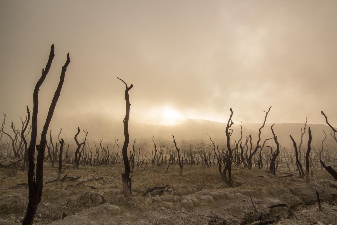 Weltklimarat veröffentlicht Sonderbericht zu 1,5 Grad
