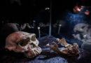 Ältester Menschenschädel außerhalb Afrikas zu sehen