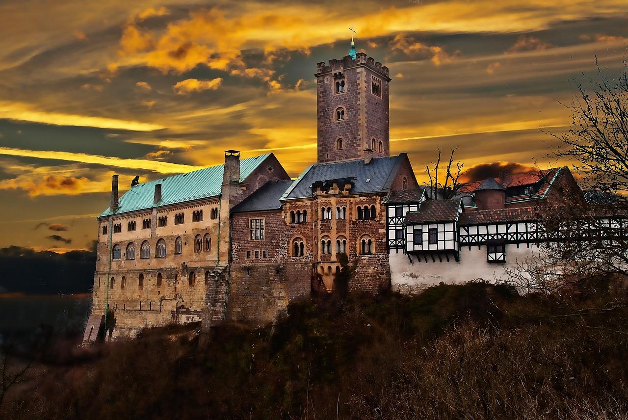 WWF-Urwaldprojekt in Thüringen: Seltener Eremit nahe der Wartburg gefunden