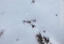Wie kann sowas passieren? Hubschrauber kollidiert mit Flugzeug: Fünf Menschen sterben