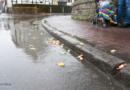 Wenn Bilder mehr als tausend Worte sagen zum Rosenmontagsumzug in Volkmarsen