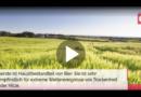 Ach herrje : Bier wird bald teurer!: Schuld ist der Klimawandel