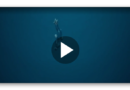 Hörte Freitaucher Guillaume Nery Hilfeschreie sterbender Waale?
