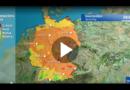 Pollenflug bis zum Wochenende: Wo die Belastung am höchsten ist