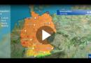 Pollenflug: Starke Konzentration von Baumpollen am Samstag
