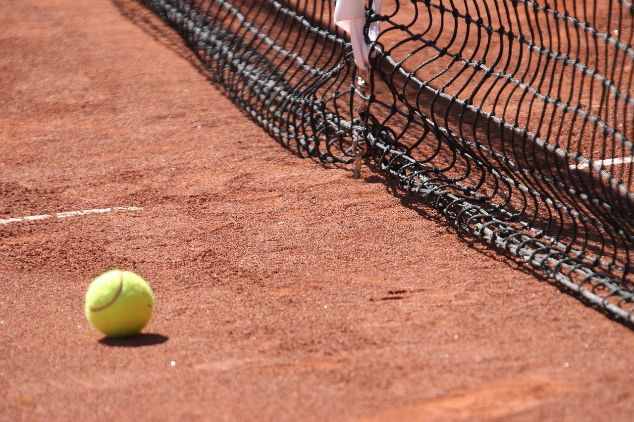 Petkovic steht in Runde drei der French Open