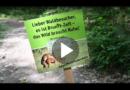 Wildes Sexplakat: Mountainbiker wollen Wald-Verkehr regeln