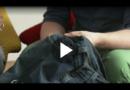 Dafür ist die kleine Tasche an der Jeans
